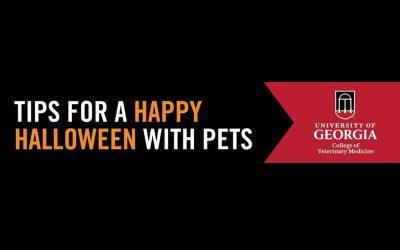 Tips for Happy Halloween
